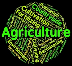 Who Should Select Agriculture As An Optional – For UPSC Mains Examination.