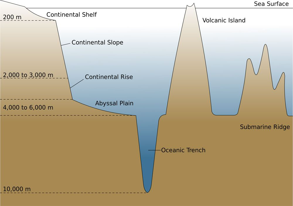Geography Notes On – Oceanic Trenches – For W.B.C.S. Examination.