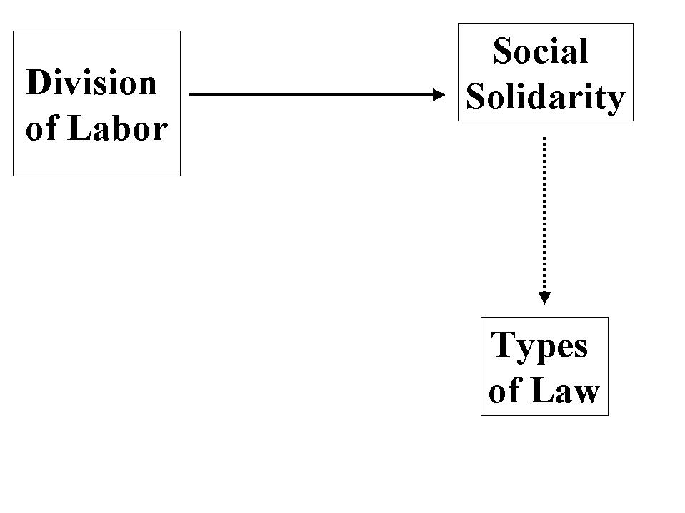 Sociology Notes On – The Division Of Labor In Society – For W.B.C.S. Examination.
