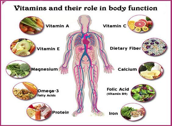 General Science Notes On – Role of Vitamins In Our Body  – For W.B.C.S. Examination.