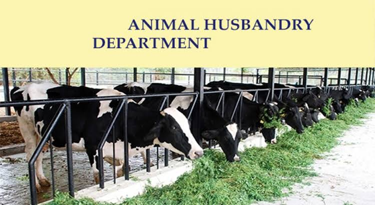 Predicting Feed Intake – Animal Husbandry And Veterinary Science Notes – For W.B.C.S. Examination.
