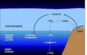 Geology Notes On – Ocean Fertilization – For W.B.C.S. Examination.