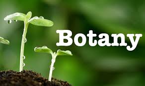 W.B.C.S. Main Examination 2019 Optional Botany Question Paper I And II Download