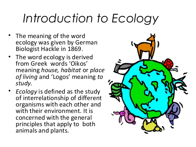 W.B.C.S. Examination Notes On – Importance Of Ecology – Agriculture Notes.