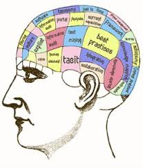 WBCS Main Writing Practice Questions For Optional Psychology – Learning & Memory.