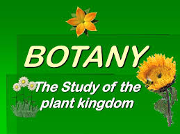 How is Botany As An Optional – For UPSC Mains Examination.