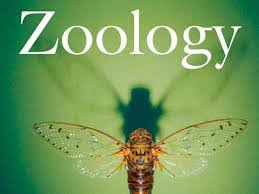 W.B.C.S. Examination Notes On – Modes Of Life In Polychaetes – Zoology Notes.