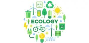W.B.C.S. Examination Notes On – Forest Conservation – Ecology And Environment Notes.