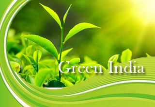 Essay Composition On – Green India Mission – For W.B.C.S. Examination.