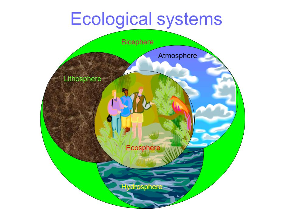 W.B.C.S. Examination Notes On – Factors Affecting Biosphere And Components Of Biosphere – Environment Notes.