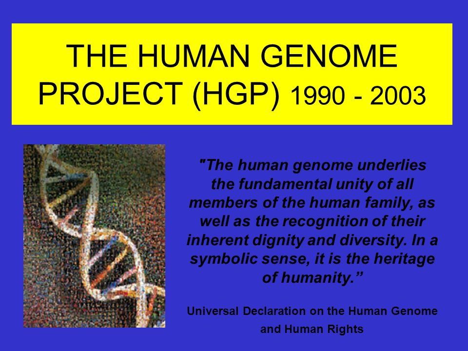 Zoology Notes On –  Human Genome Project – For W.B.C.S. Examination.