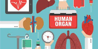 Organ Transplant – Medical Science Notes – For W.B.C.S. Examination.