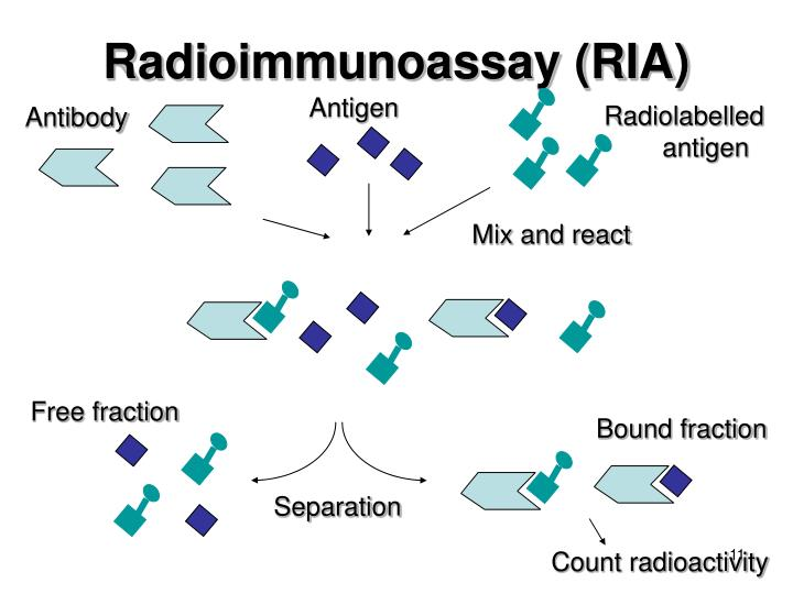 Radioimmunoassay (RIA) – Medical Science Notes – For W.B.C.S. Examination.