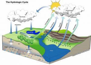 Geology Notes On – Hydrology – For W.B.C.S. Examination.