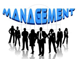 Management Notes On – Flexible Systems Management – For W.B.C.S. Examination.