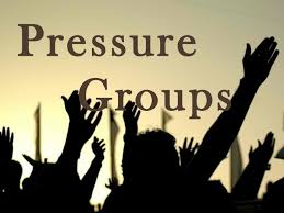 Political Science Notes On – Role Of Pressure Group In Democracy – For W.B.C.S. Examination.